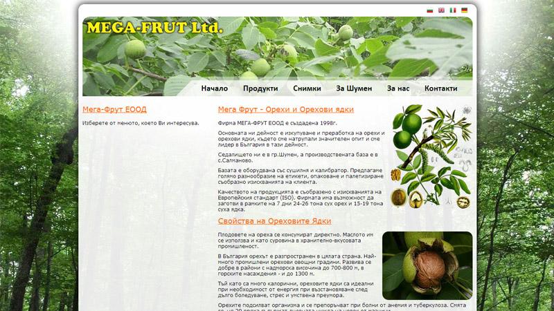 изработка на сайт на фирма